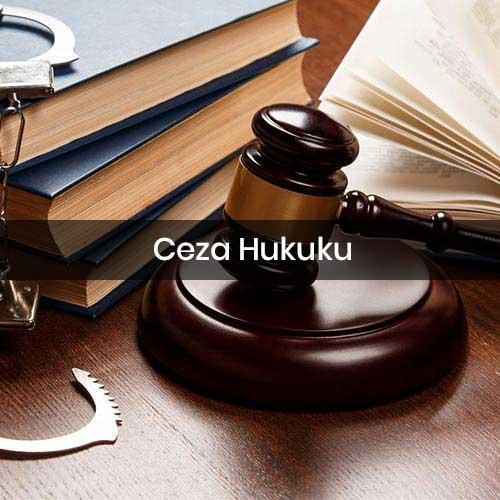 ceza-hukuku-anasayfa